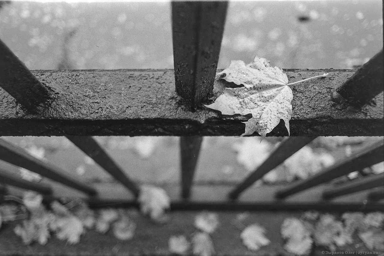 Кронштадтская осень в чёрно белом